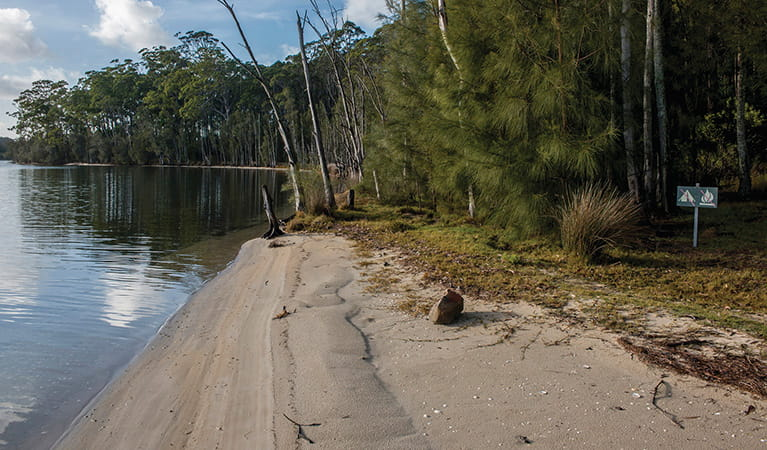 Untracked beach on Burrill Lake, fringed by bush, under a sunny sky. Photo: Michael Van Ewijk/DPIE