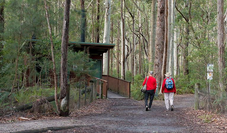 Bushwalkers walking along Meroo Head Lookout walking track, Meroo National Park. Photo: Michael van Ewijk/OEH