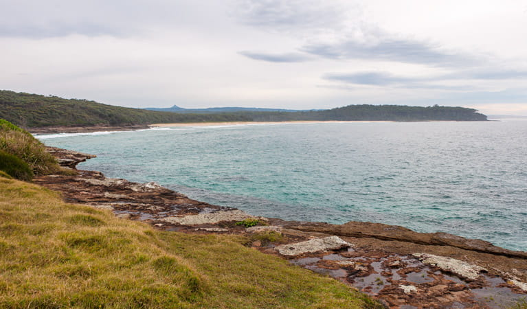Nuggan Point walking track, Meroo National Park. Photo: Michael van Ewijk
