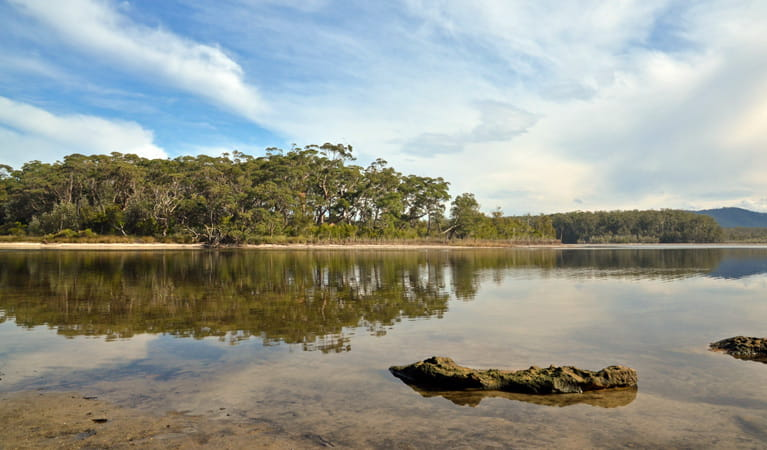 Termeil Lake, Meroo National Park. Photo: Michael Jarman