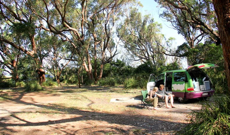 Aragunnu campground. Photo: John Yurasek Copyright: NSW Government