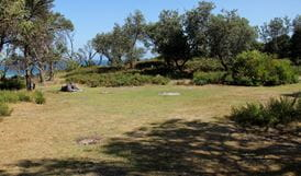 Middle Beach campground, Mimosa Rocks National Park. Photo: John Yurasek Copyright:NSW Government
