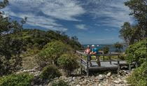 Couple on boardwalk on Mimosa Rocks walking track. Photo: David Finnegan/DPIE
