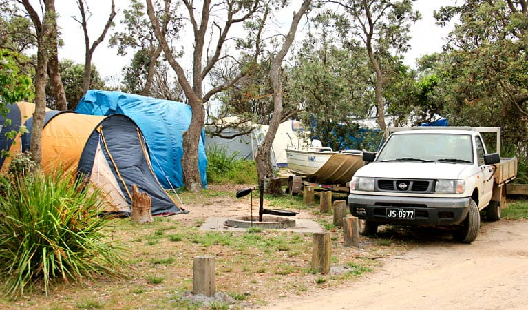 Picnic Point Campground, Mimosa Rocks National Park. Photo: John Yurasek Copyright: NSW Government
