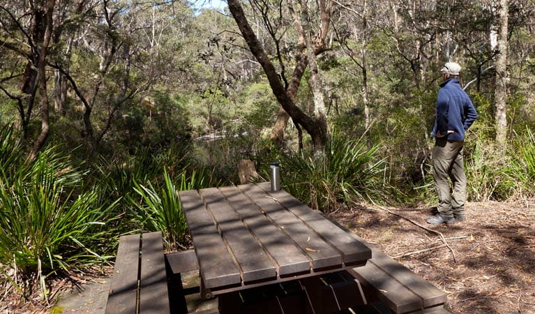 Dasyurus picnic area table, Monga National Park. Photo: Lucas Boyd