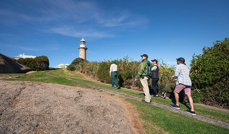 3 people follow a ranger guided tour of Montague Island Nature Reserve. Photo: Daniel Tran/OEH