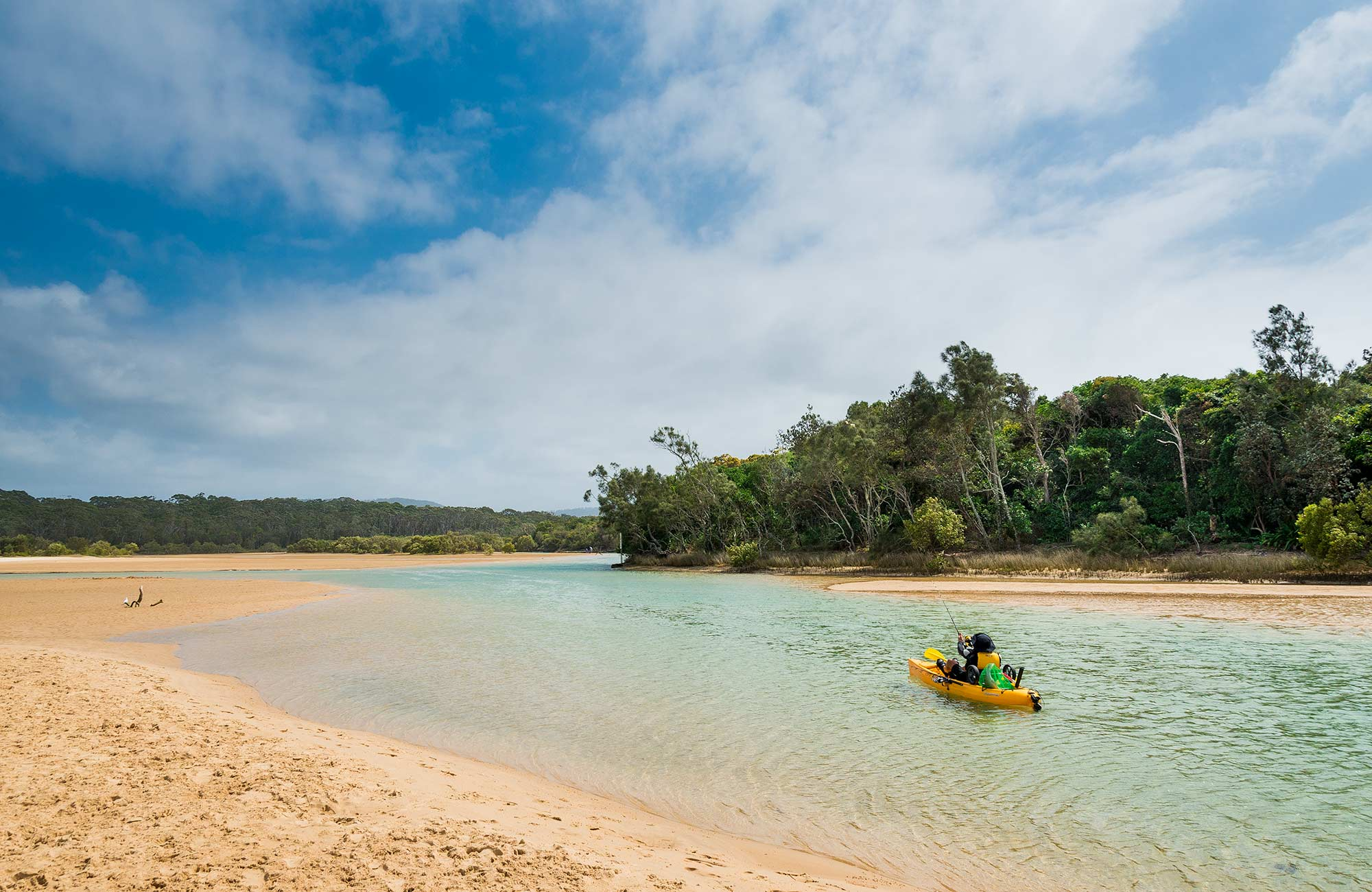 Mooneed Creek, Moonee Beach Nature Reserve. Photo: David Young
