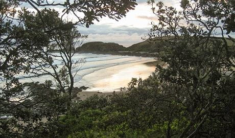 Dammerals Historical walk , Moonee Beach Nature Reserve. Photo: J.Webster