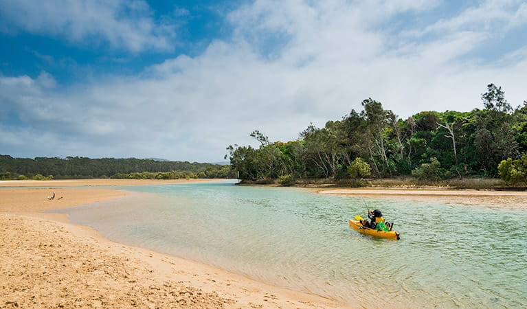 Moonee Creek, Moonee Beach Nature Reserve. Photo: David Young