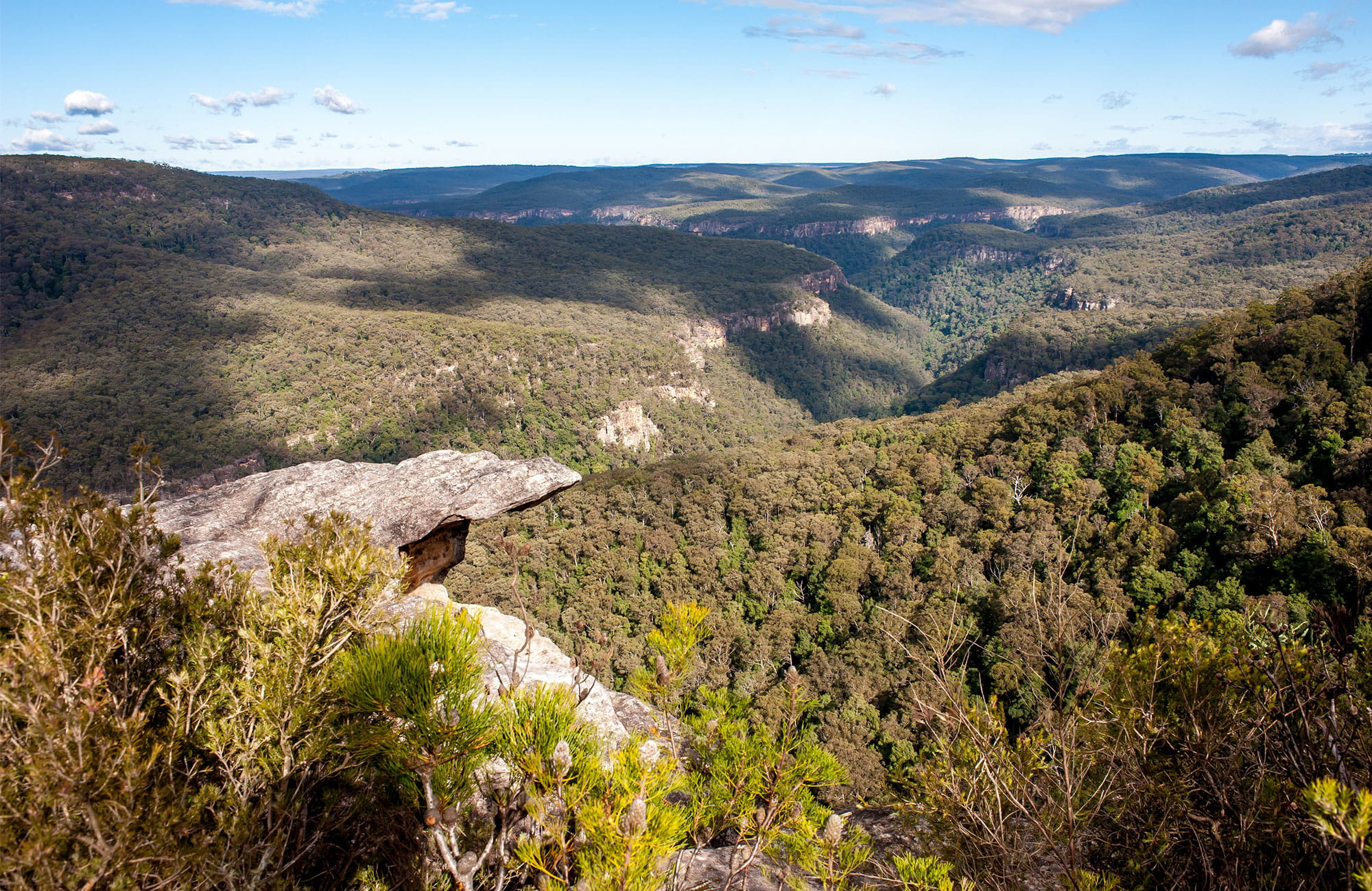 View from Beauchamps Cliffs over forest-clad wilderness of Morton National Park. Photo: Michael Van Ewijk/DPIE.