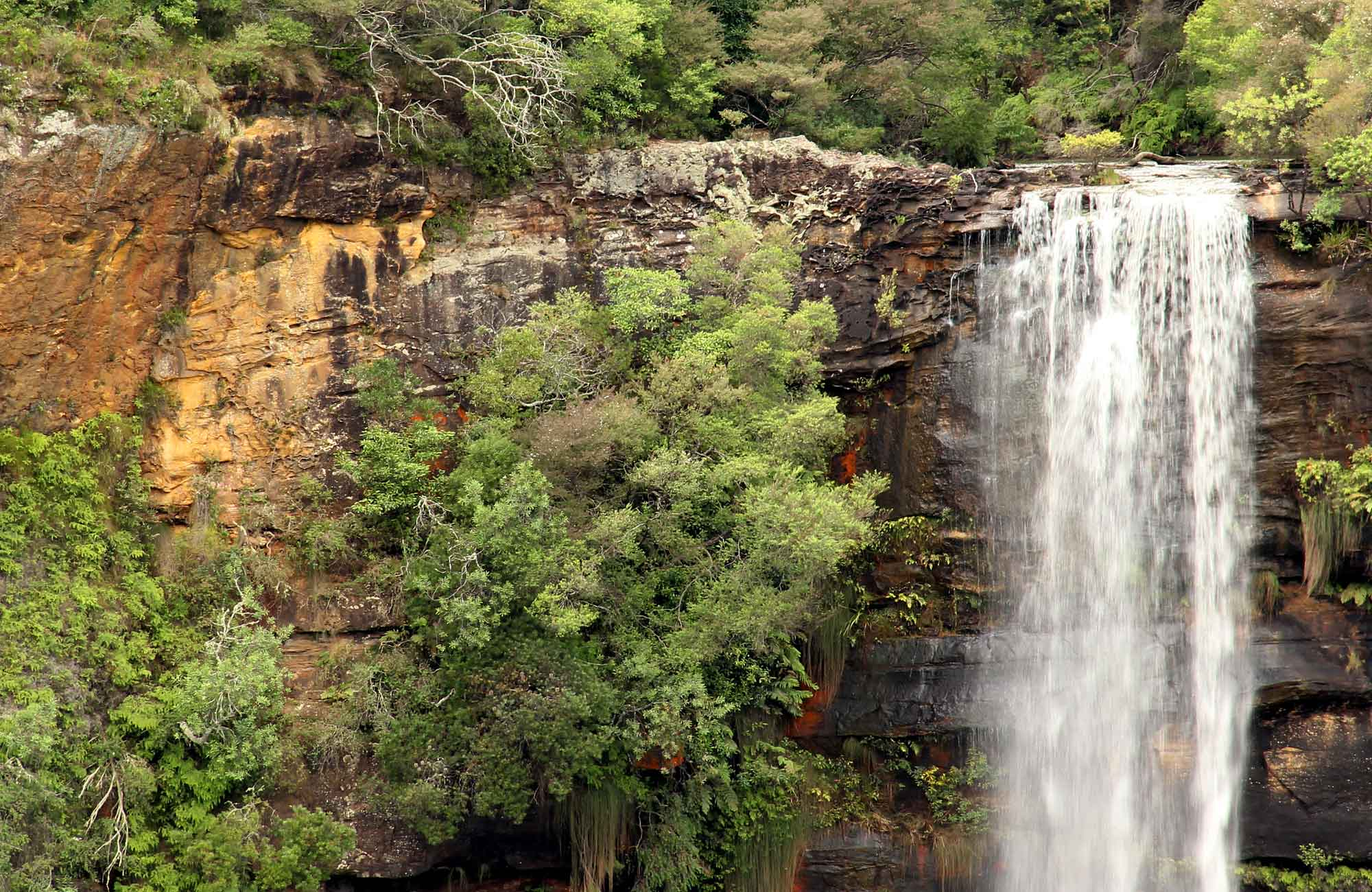 Fitzroy Falls, Morton National Park. Photo: John Yurasek/NSW Government