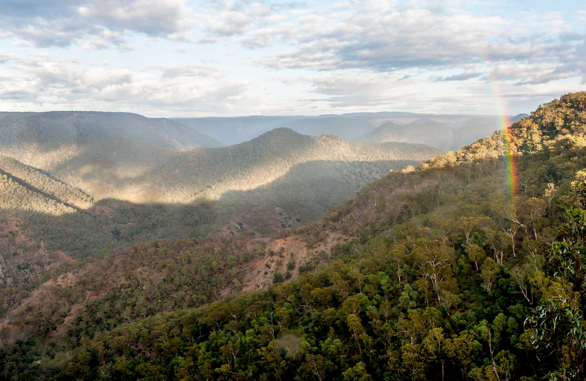 Badgerys Spur walking track, Morton National Park. Photo: Michael van Ewijk