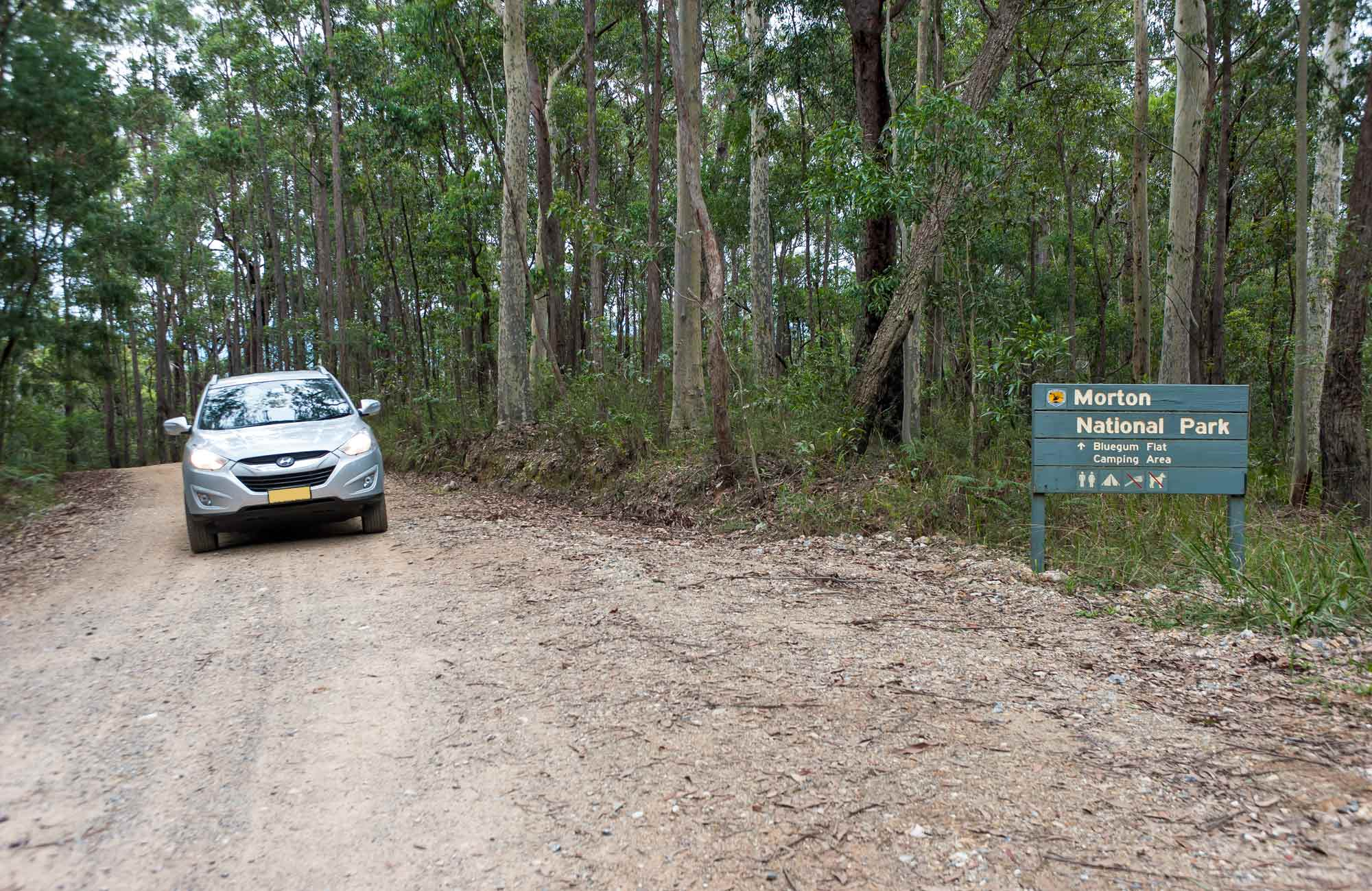 Blue Gum Flat campground, Morton National Park. Photo: Michael van Ewijk