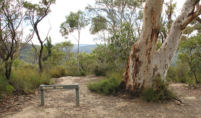 Sign for Bonnie View lookout, set in native bushland in Morton National Park. Photo: John Yurasek/DPIE.