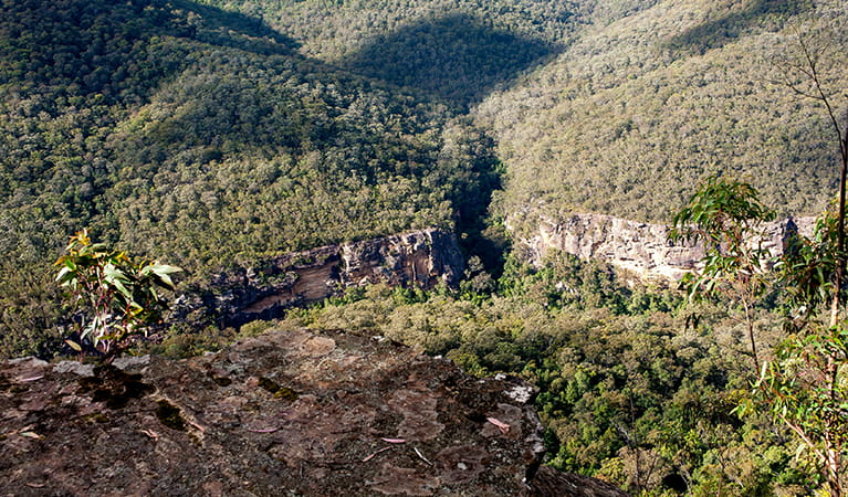 View over rocky ledge at Beauchamps Cliffs lookout to rugged cliffs and untracked bushland in Morton National Park. Photo: Michael Van Ewijk/DPIE.