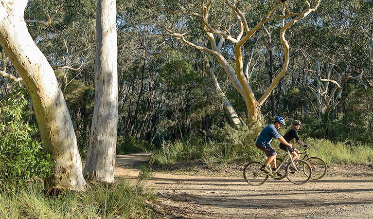 Bundanoon cycling route, Morton National Park. Photo: Michael Van Ewijk