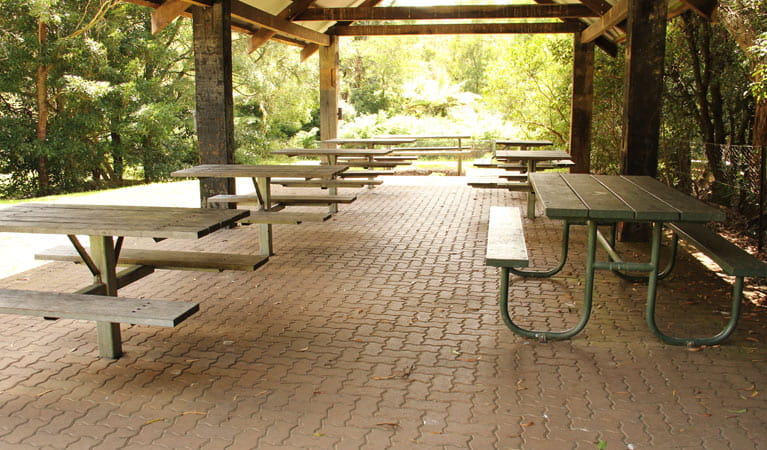 Fitzroy Falls picnic area | NSW National Parks