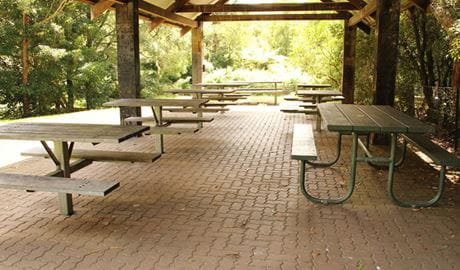 Fitzroy Falls picnic area, Morton National Park. Photo: John Yurasek/NSW Government