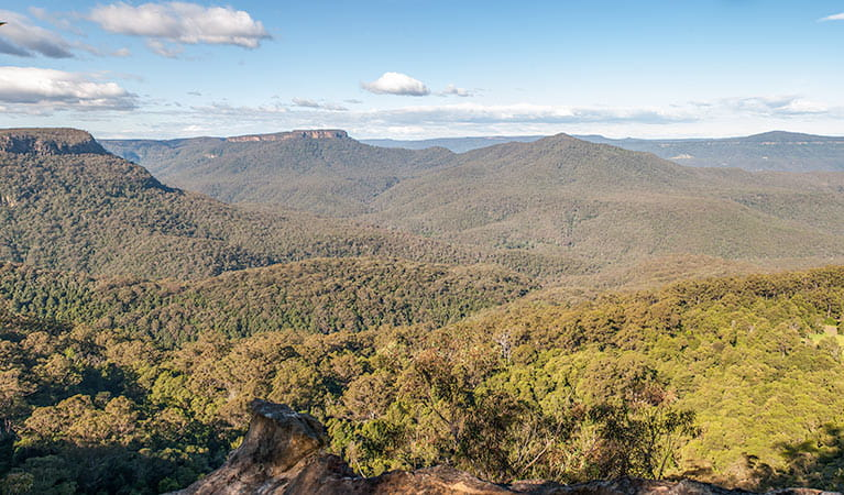 Fitzroy Falls to Kangaroo Valley cycling route, Morton National Park. Photo: Michael Van Ewijk