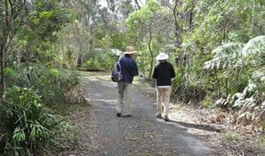 Friends of Fitzroy Falls