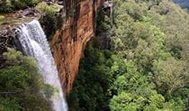 Fitzroy Falls, Morton National Park. Photo: John Yurasek © DPIE