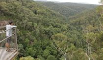 Visitor looking out over Morton National Park. Photo: John Yurasek Copyright:NSW Government