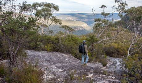 Lovers walking track, Morton National Park. Photo: Michael Van Ewijk