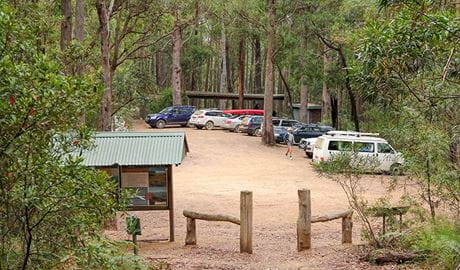 Pigeon House Didthul Mountain picnic area, Morton National Park. Photo: John Yurasek