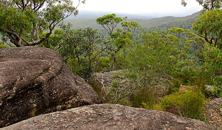 A lookout, Pigeon House Didthul walking track. Photo: John Yurasek Copyright:NSW Government