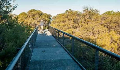 Pointer Gap lookout, Morton National Park. Photo: Michael Van Ewijk
