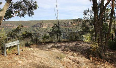 Fenced lookout area, with view across canyon to rugged cliff faces and forest-clad wilderness. Photo: John Yurasek/DPIE