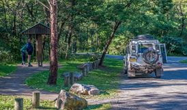 Toorooroo campground, Morton National Park. Photo: Michael Van Ewijk