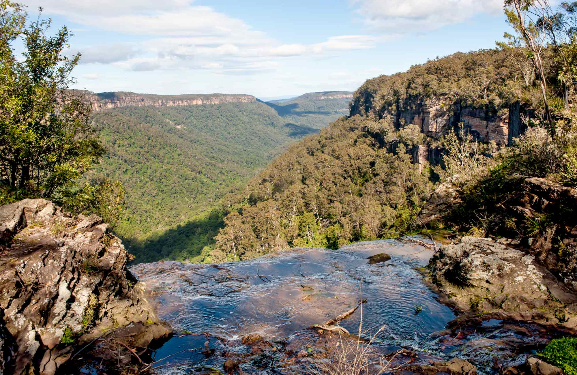 West Rim walking track, Morton National Park. Photo: John Yurasek