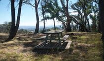 Picnic table set in bushland of Mount Canobolas State Conservation Area, with views of Orange in the distance.  Photo: Steven Woodhall/OEH