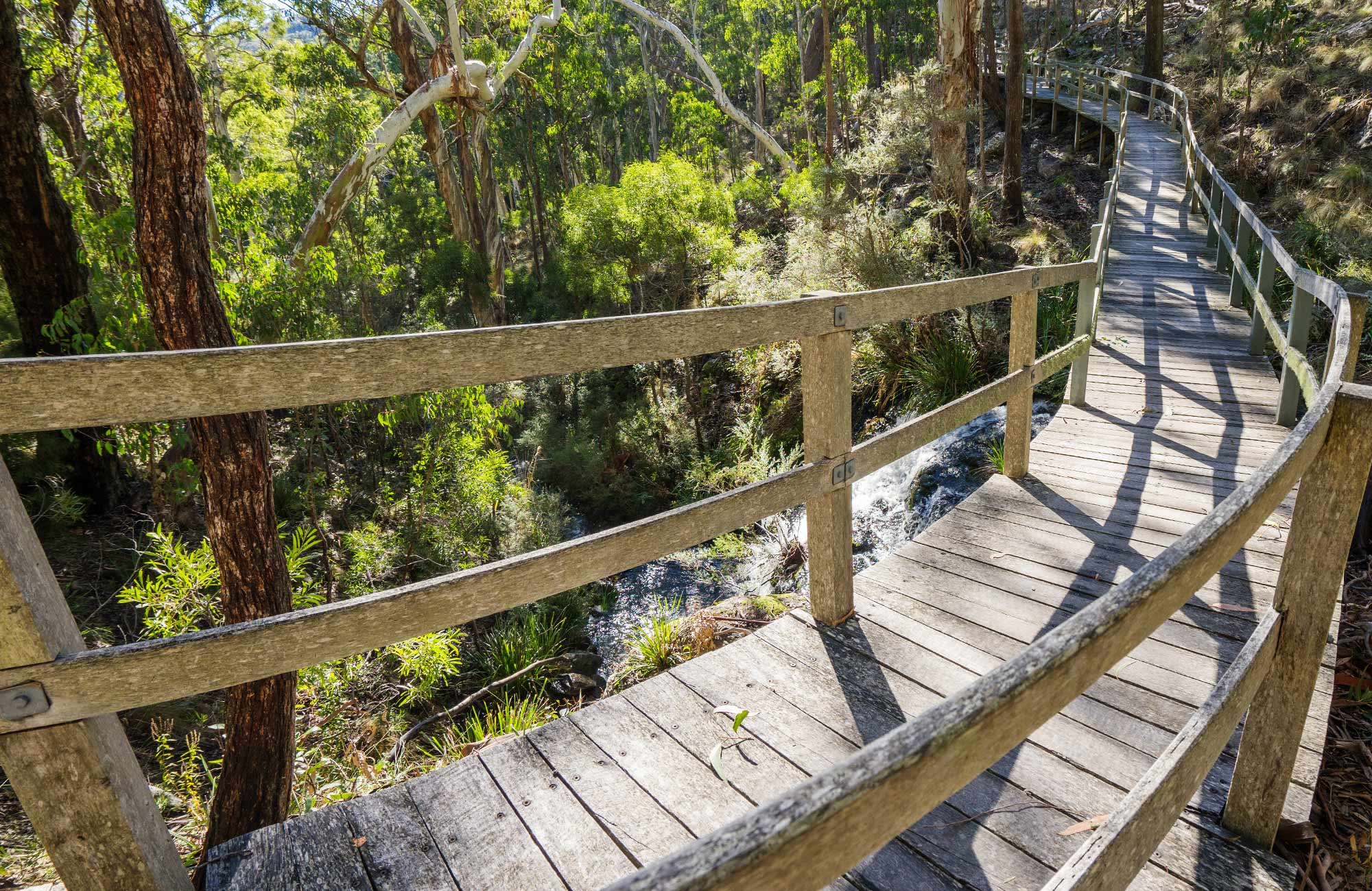 Raised timber boardwalk on Dawsons Spring nature trail, Mount Kaputar National Park. Photo: Simone Cottrell/OEH
