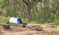 Tents in Bark Hut campground. Photo: Rob Cleary Copyright: Seen Australia