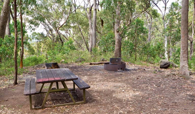 Bark Hut Campground, Mount Kaputar National Park. Photo: Rob Cleary Copyright: Seen Australia