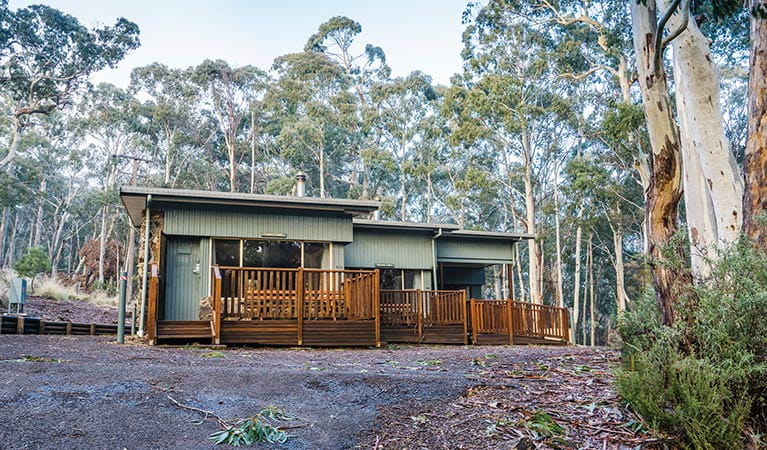 Exterior of Dawsons Spring cabins, surrounded by snow gums. Photo: Simone Cottrell/OEH