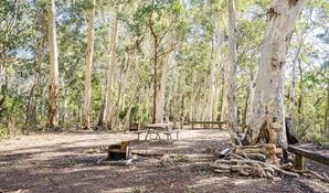 Dawsons Spring campground, Mount Kaputar National Park. Photo: Simone Cottrell/OEH