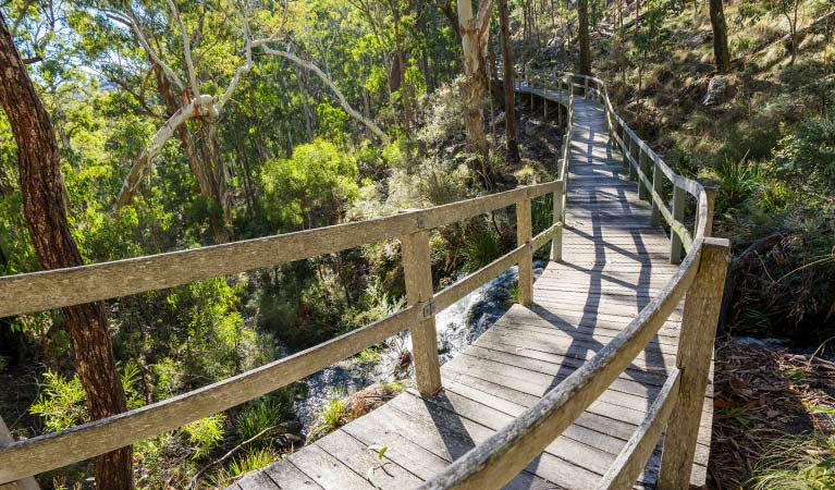 Timber boardwalk section of Dawsons Spring nature trail, Mount Kaputar National Park. Photo: Simone Cottrell/OEH