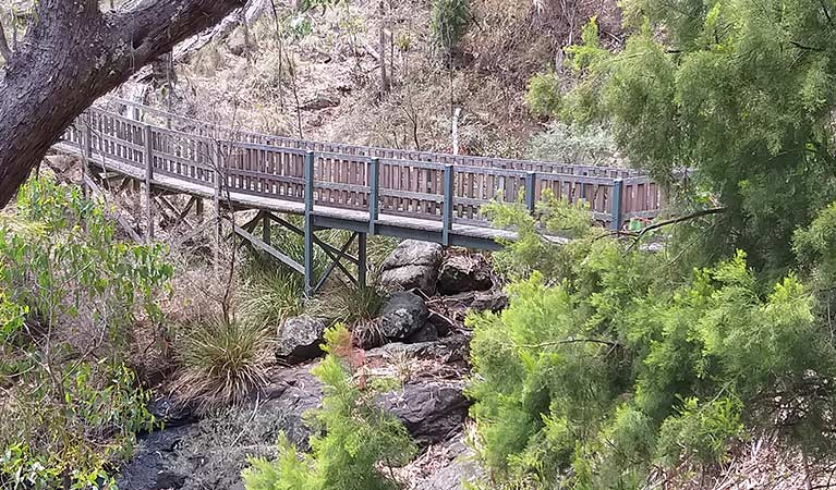 Side view of raised timber boardwalk, Dawsons Spring nature trail, Mount Kaputar National Park. Photo: Fiona Gray/OEH