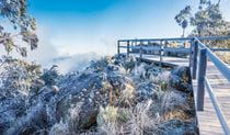 Dusting of light snow around Mount Kaputar Summit lookout. Photo: Simone Cottrell/OEH