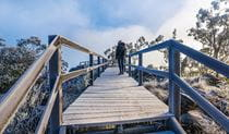 A female tourist walks along the timber walkway leading to Mount Kaputar Summit lookout