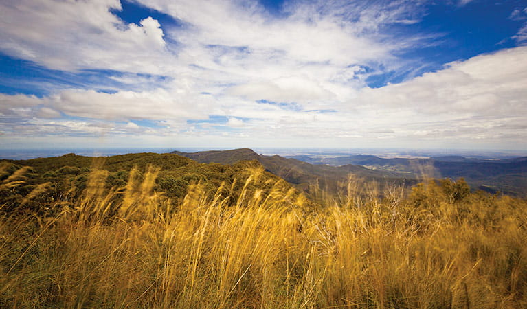 View from the lookout, Mount Kaputar Summit walk. Photo: Rob Cleary Copyright:NSW Government