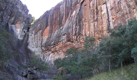 Waa Gorge picnic area, Mount Kaputar National Park. Photo: OEH