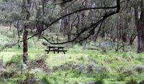 Fourth Crossing picnic area, Mullion Range State Conservation Area. Photo: NSW Government