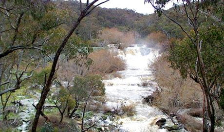 The Falls Water Falls, Mullion Range State Conservation Area. Photo: NSW Government