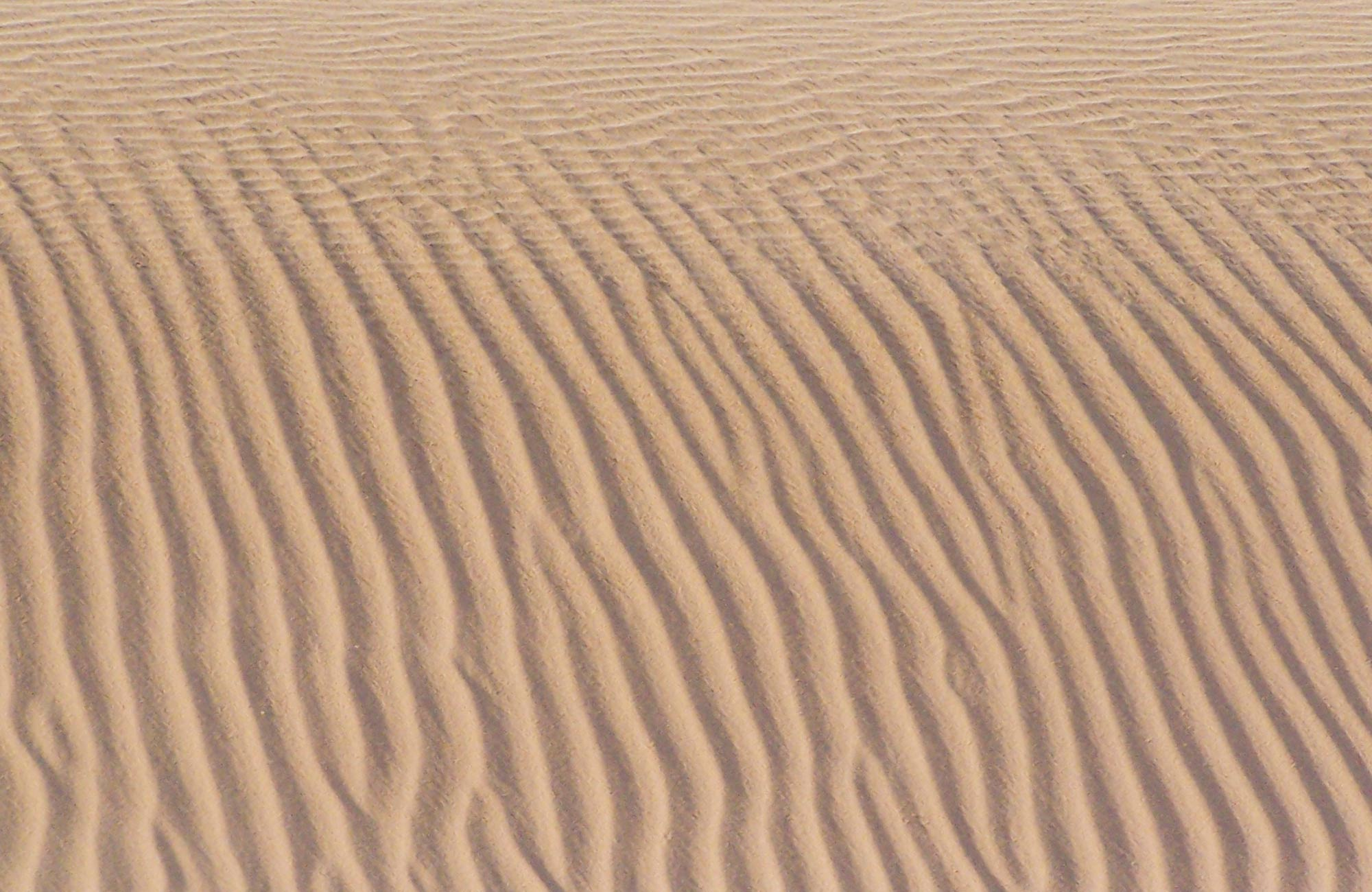 Close up of sand dunes, Mungo National Park. Photo:OEH