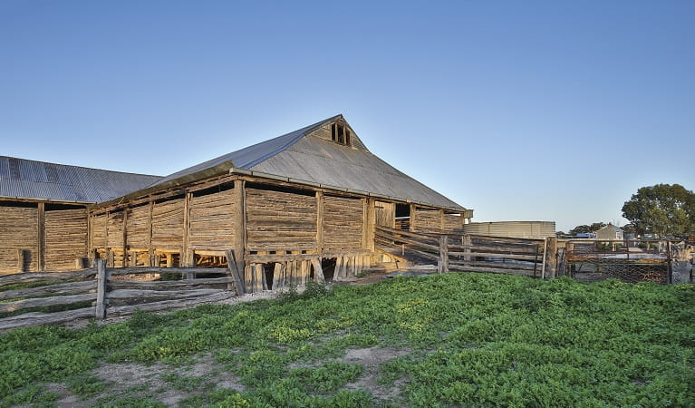 Mungo Woolshed in Mungo National Park. Photo: Vision House Photography/OEH