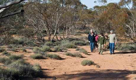People on the Mallee Stop walk. Photo: Boris Hlavica